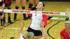 Volleyball Beats Saint Louis