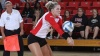 Volleyball Beats Kent State, IMproves to 3-0 vs NEO Teams